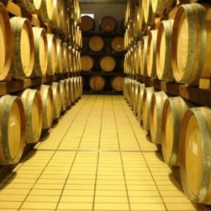 Cantina Toscana Agriturismo