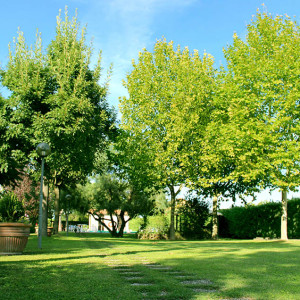 Parco Agriturismo Trasimeno