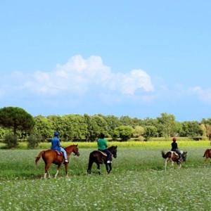 Escursioni A Cavallo Sul Trasimeno